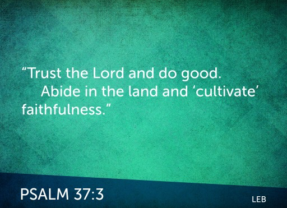 Verse of the Week | Psalm 37:3 – Cultivating Faithfulness in the Seasons of Life